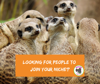 Looking for People to Join your Niche_.png